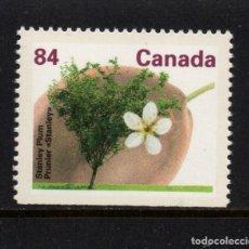 Sellos: CANADA 1227A** - AÑO 1991 - FLORA - ARBOLES DEL CANADA. Lote 151410810