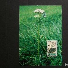 Sellos: LIECHTENSTEIN-1995-CARTA MAXIMA-1,80.. Y&T 1059-FLORA-PLANTAS MEDICINALES. Lote 151607694