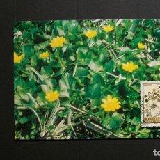 Sellos: LIECHTENSTEIN-1995-CARTA MAXIMA-3,50F.. Y&T 1060-FLORA-PLANTAS MEDICINALES. Lote 151607806