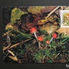 Sellos: LIECHTENSTEIN-2000-CARTA MAXIMA-90R.. Y&T 1193-FLORA-HONGOS. Lote 151607966