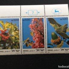 Sellos: ISRAEL Nº YVERT 813A *** AÑO 1981.FLORA. ARBOLES DE TIERRA SANTA. Lote 151906434