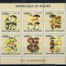 Sellos: R. GUINEA 2002 HB *** FLORA - SETAS - CHAMPIÑONES. Lote 155913770