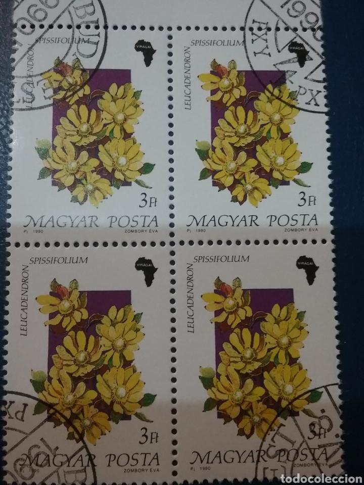 SELLOS DE HUNGRÍA (MAGYAR P.) MTDOS/1990/FLORA/FLORES/AFRICA/PLANTAS/NATURALEZA/ (Sellos - Temáticas - Flora)