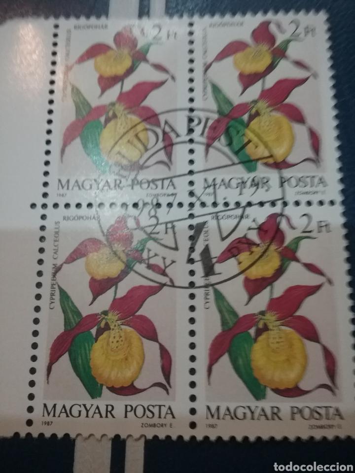 SELLOS DE HUNGRÍA (MAGYAR P.) MTDOS/1987/FLORA/FLORES/ORQUIDEAS/NATURALEZA/PLANTAS/ (Sellos - Temáticas - Flora)