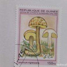 Sellos: GUINEA SELLO USADO FLORA SETAS. Lote 181990692