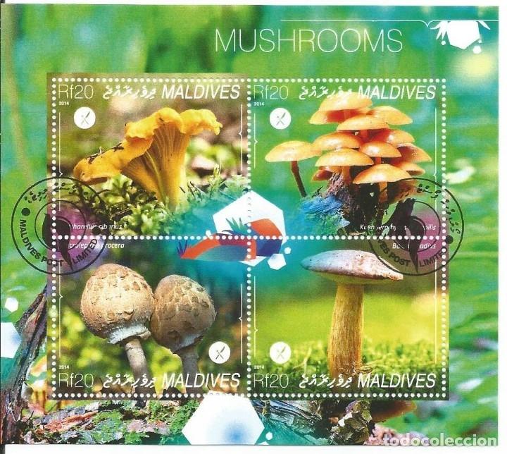 HOJA BLOQUE : MALDIVAS SETAS (Sellos - Temáticas - Flora)