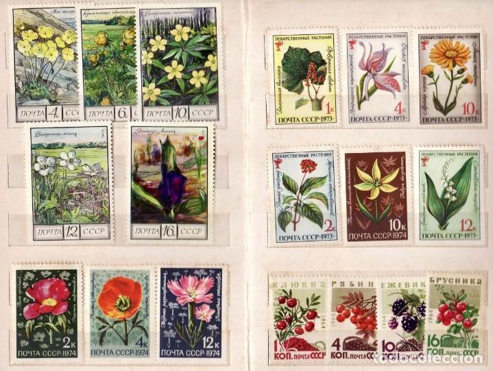 Sellos: Flores Rusia 33 sellos - Foto 2 - 191796956