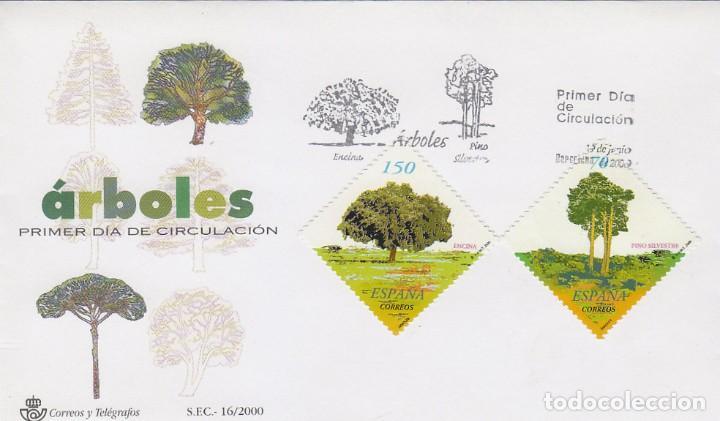 EDIFIL 3717/8, ARBOLES: ENCINA Y PINO, PRIMER DIA DE 19-6-2000 SFC (Sellos - Temáticas - Flora)