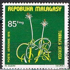 Sellos: MADAGASCAR Nº 800, PATA DE ELEFANTE, USADO. Lote 199141542