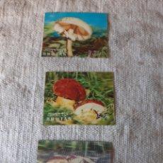 Sellos: MICOLOGÍA SETAS BHUTAN SERIE TRIDIMENSIONAL RARA. Lote 205575736