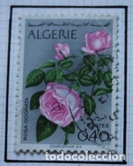 Sellos: Lote de 14 sellos de rosas diferentes países entre 1974 1983 - Foto 4 - 140172658