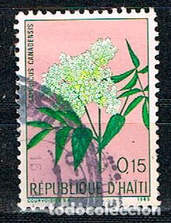 HAITI Nº 897, FLORA HAITIANA, LA BADEA (PASSIFLORA QUADRANGULARIS) O TUMBO GIGANTE, QUIJÓN, USADO (Sellos - Temáticas - Flora)