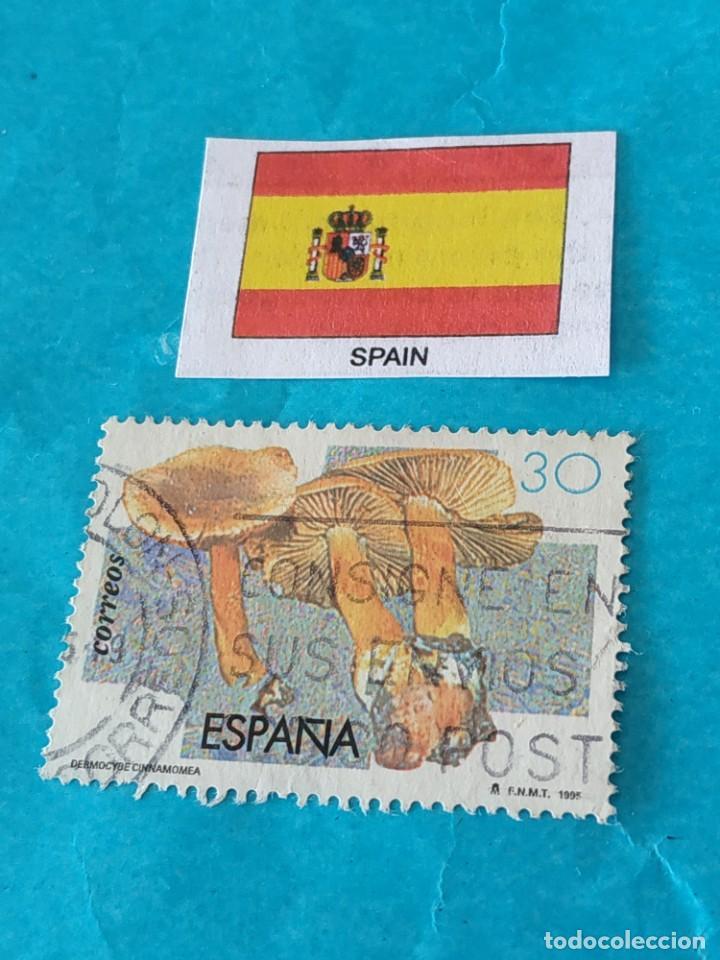 ESPAÑA FLORA C (Sellos - Temáticas - Flora)
