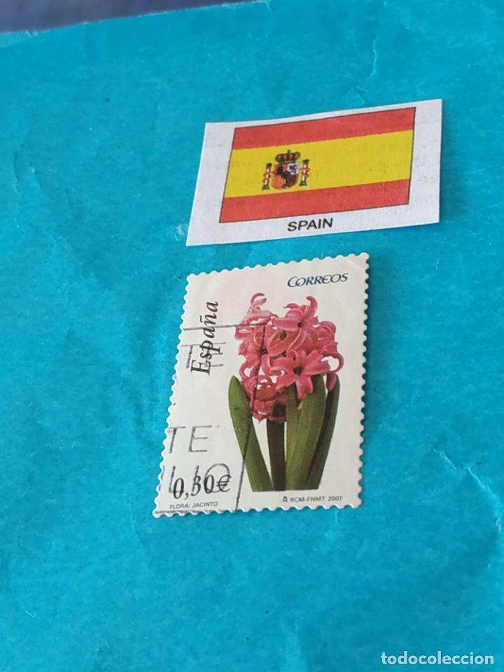 ESPAÑA FLORA R (Sellos - Temáticas - Flora)