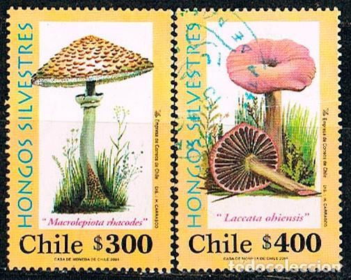 CHILE Nº 1997 /8, HONGOS: APAGADOR Y LACARIA, USADO (SERIE COMPLETA) (Sellos - Temáticas - Flora)