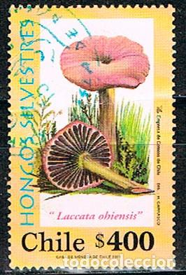 CHILE Nº 1998, HONGOS: LACARIA DEL EUCALIPTO, USADO (Sellos - Temáticas - Flora)