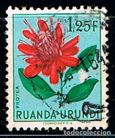 RUANDA URUNDI Nº 138 PROTEA, USADO (Sellos - Temáticas - Flora)