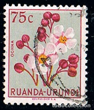 RUANDA URUNDI Nº 135, EUPHORBIA, USADO (Sellos - Temáticas - Flora)