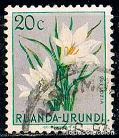 RUANDA URUNDI Nº 131 VELLOZIA, USADO (Sellos - Temáticas - Flora)