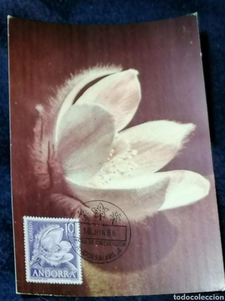 Sellos: Flores Andorra España 1966 sellos, sobres, Postales, SPD - Foto 3 - 241049175