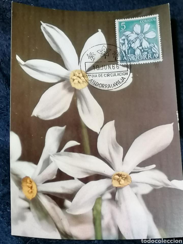 Sellos: Flores Andorra España 1966 sellos, sobres, Postales, SPD - Foto 4 - 241049175