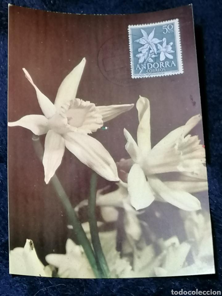 Sellos: Flores Andorra España 1966 sellos, sobres, Postales, SPD - Foto 6 - 241049175