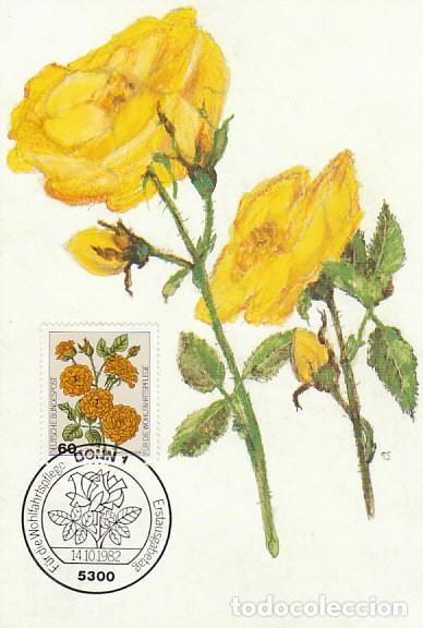 ALEMANIA IVERT 983, ROSA FLORIBUNDA, TARJETA MÁXIMA DE 14-10-1982 (Sellos - Temáticas - Flora)