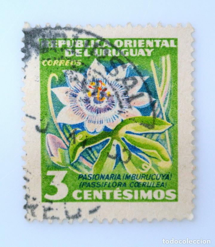 SELLO POSTAL URUGUAY 1954, 3 C, FLOR PASIONARIA, PASIFLORA, USADO (Sellos - Temáticas - Flora)