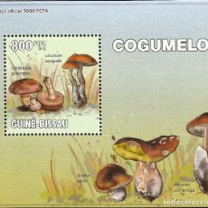 Sellos: GUINEA 2010 HOJA BLOQUE SELLOS FLORA HONGOS- CHAMPIGNONES- MUSHROOMS- SETAS. Lote 235371890