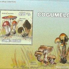 Sellos: GUINEA 2010 HOJA BLOQUE SELLOS FLORA HONGOS- CHAMPIGNONES- MUSHROOMS- SETAS. Lote 235372375