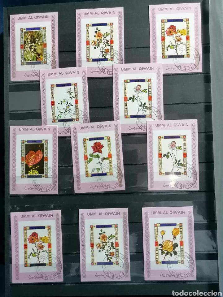 Sellos: Flores Rosas lote Sellos mini Hbs años 70s Emiratos Arabes - Foto 2 - 240029765