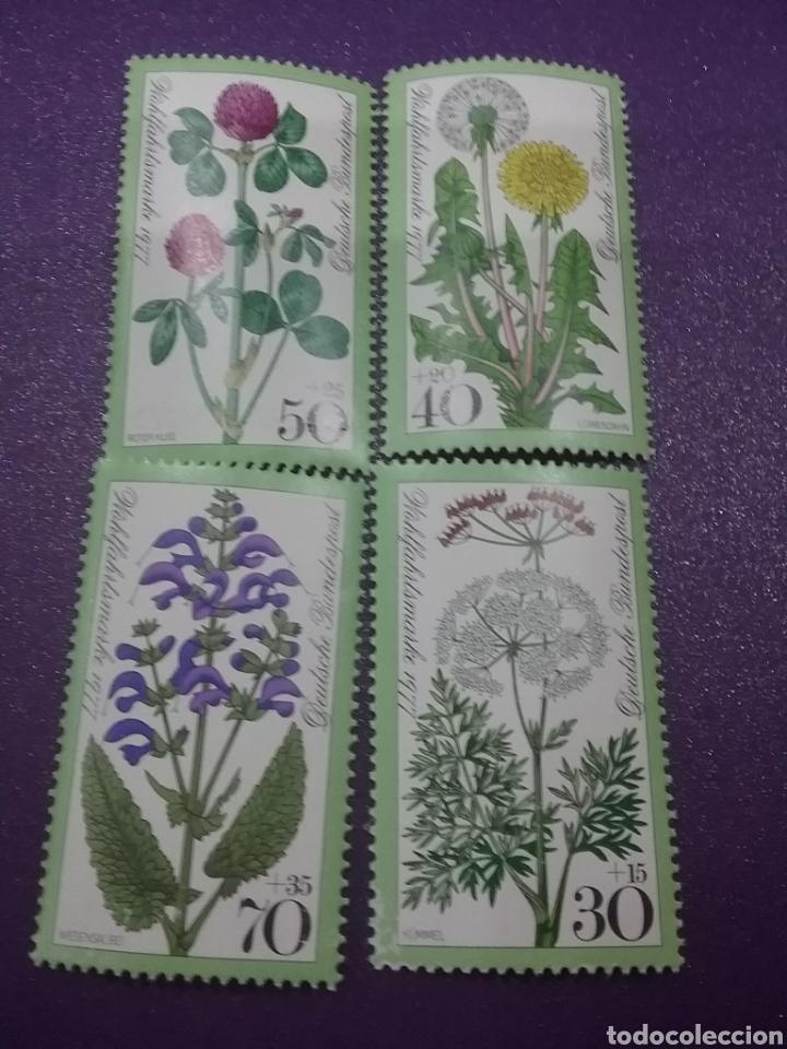 SELLO ALEMANIA R. FEDERAL NUEVO/1977/FLORES/FLORA/NATURALEZA/PLANTAS/DIENTE/LEON/TRÉBOL/ROJO/SALVIA/ (Sellos - Temáticas - Flora)