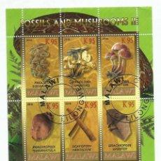 Sellos: MALAWI 2010 HOJA BLOQUE SELLOS FLORA FOSILES Y CHAMPIGNONES- MUSHROOMS- SETAS - HONGOS. Lote 254761340