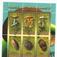 Sellos: MALAWI 2010 HOJA BLOQUE SELLOS FLORA FOSILES Y CHAMPIGNONES- MUSHROOMS- SETAS - HONGOS. Lote 254761425