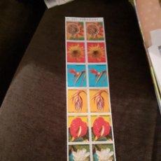 Sellos: LOTE DE 2 X 7 SELLOS DE PARAGUAY. TEMATICA FLORA. SIN CIRCULAR.. Lote 254990385