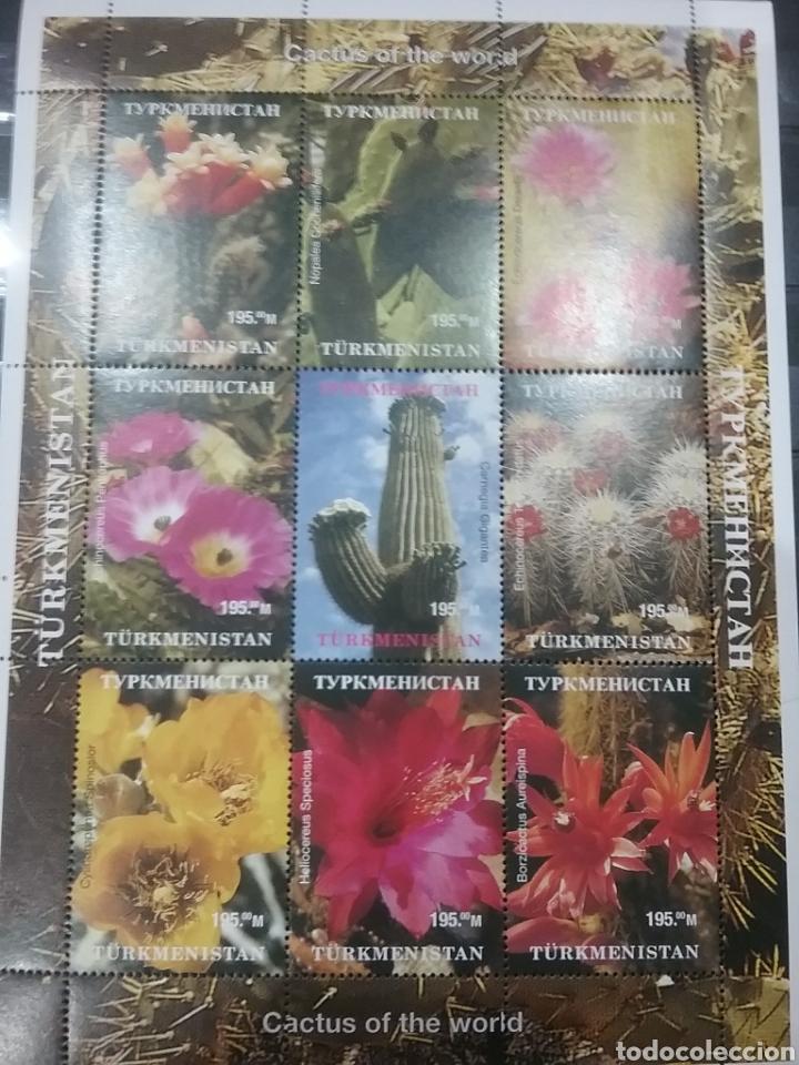HB R. TURKMENISTÁN NUEVA/.....AÑO?/FLORES/CACTUS/PLANTAS/NATURALEZA/FLORA/// (Sellos - Temáticas - Flora)