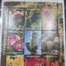 Sellos: HB R. TURKMENISTÁN NUEVA/.....AÑO?/FLORES/CACTUS/PLANTAS/NATURALEZA/FLORA///. Lote 255441665