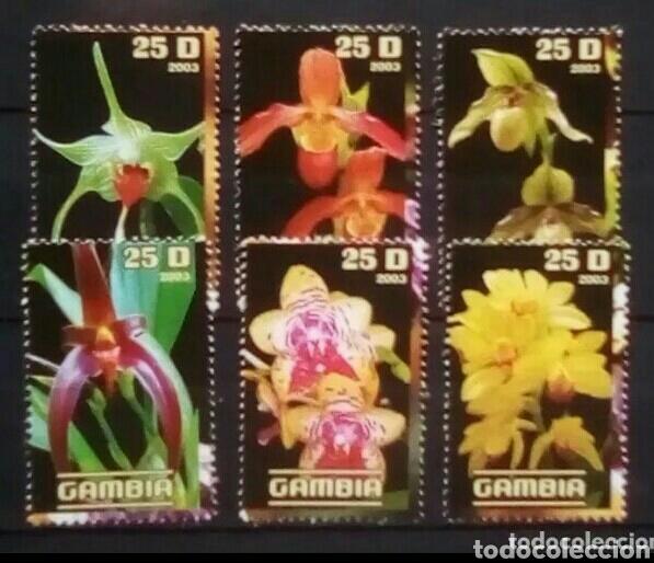 FLORES SERIE DE SELLOS NUEVOS DE GAMBIA (Sellos - Temáticas - Flora)