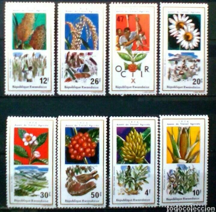 FLORES SERIE DE SELLOS NUEVOS DE RWANDA (Sellos - Temáticas - Flora)