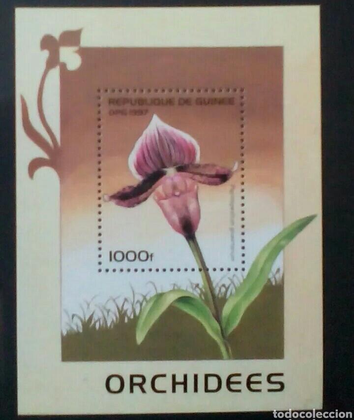 ORQUIDEAS HOJA BLOQUE DE SELLOS NUEVOS DE GUINEA (Sellos - Temáticas - Flora)