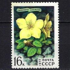 Sellos: 1977 RUSIA-URSS-UNIÓN SOVIÉTICA YVERT 4370 FLORA, FLORES MNH** NUEVO SIN FIJASELLOS. Lote 262926865