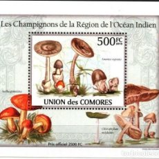 Sellos: UNION DE COMORES 2010 HOJA BLOQUE SELLOS FLORA HONGOS- CHAMPIGNONES- MUSHROOMS- SETAS. Lote 287258378