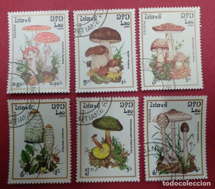 LAOS 1985. TEMATICA SETAS. (Sellos - Temáticas - Flora)