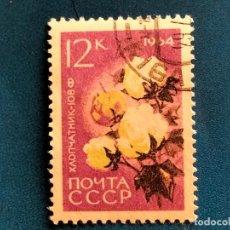 Sellos: RUSIA. CCCP. AÑO 1964. YVERT 2841. FLORA. FLORES. Lote 289300608