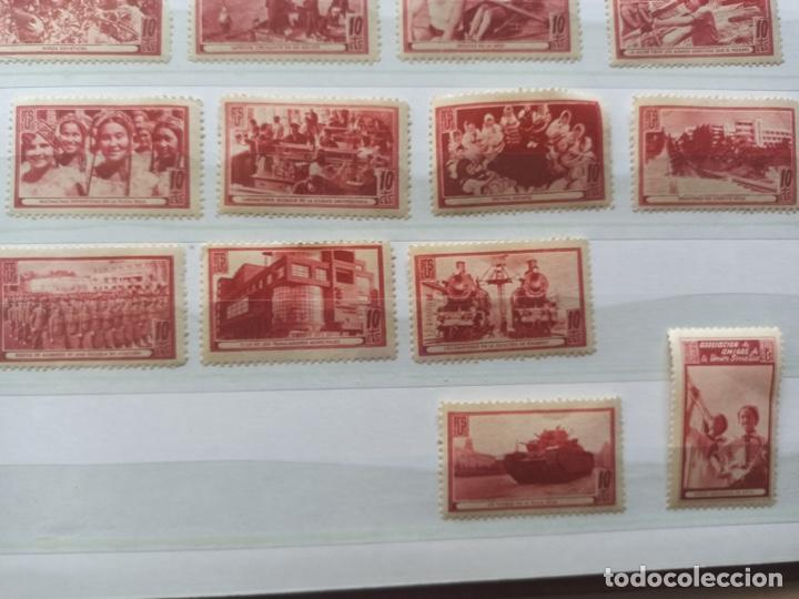 Sellos: Lote sellos Asociación de Amigos de la Unión Soviética - Foto 4 - 273478998