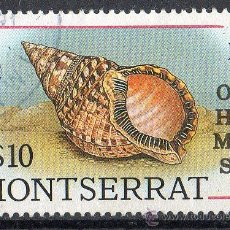 Sellos: MONTSERRAT AÑO 1988 MI 725 °° - OHMS - CONCHAS MARINAS - NATURALEZA - FAUNA. Lote 10247776