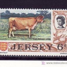 Sellos: GRAN BRETAÑA-JERSEY 11 SIN CHARNELA, FAUNA, VACA DE JERSEY. Lote 20924090
