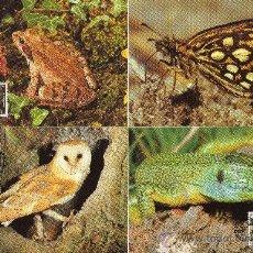 Sellos: JERSEY AÑO 1989 YV 470/73 TMX WWF PROTECCIÓN DE LA NATURALEZA - FAUNA - AVES - REPTILES - INSECTOS. Lote 26161819