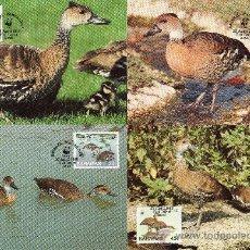 Sellos: BAHAMAS AÑO 1988 YV 659/62 - TMX - WWF - CONSERVACIÓN DE LA NATURALEZA - FAUNA - AVES - PATOS. Lote 27099560