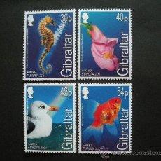 Sellos: GIBRALTAR 2001 IVERT 963/6 *** EUROPA - EL AGUA - FAUNA Y FLORA. Lote 29621039
